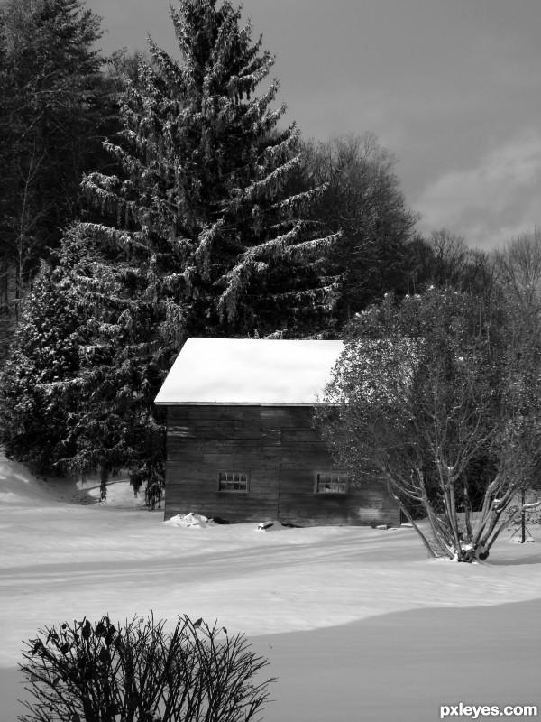 Winter Silence...