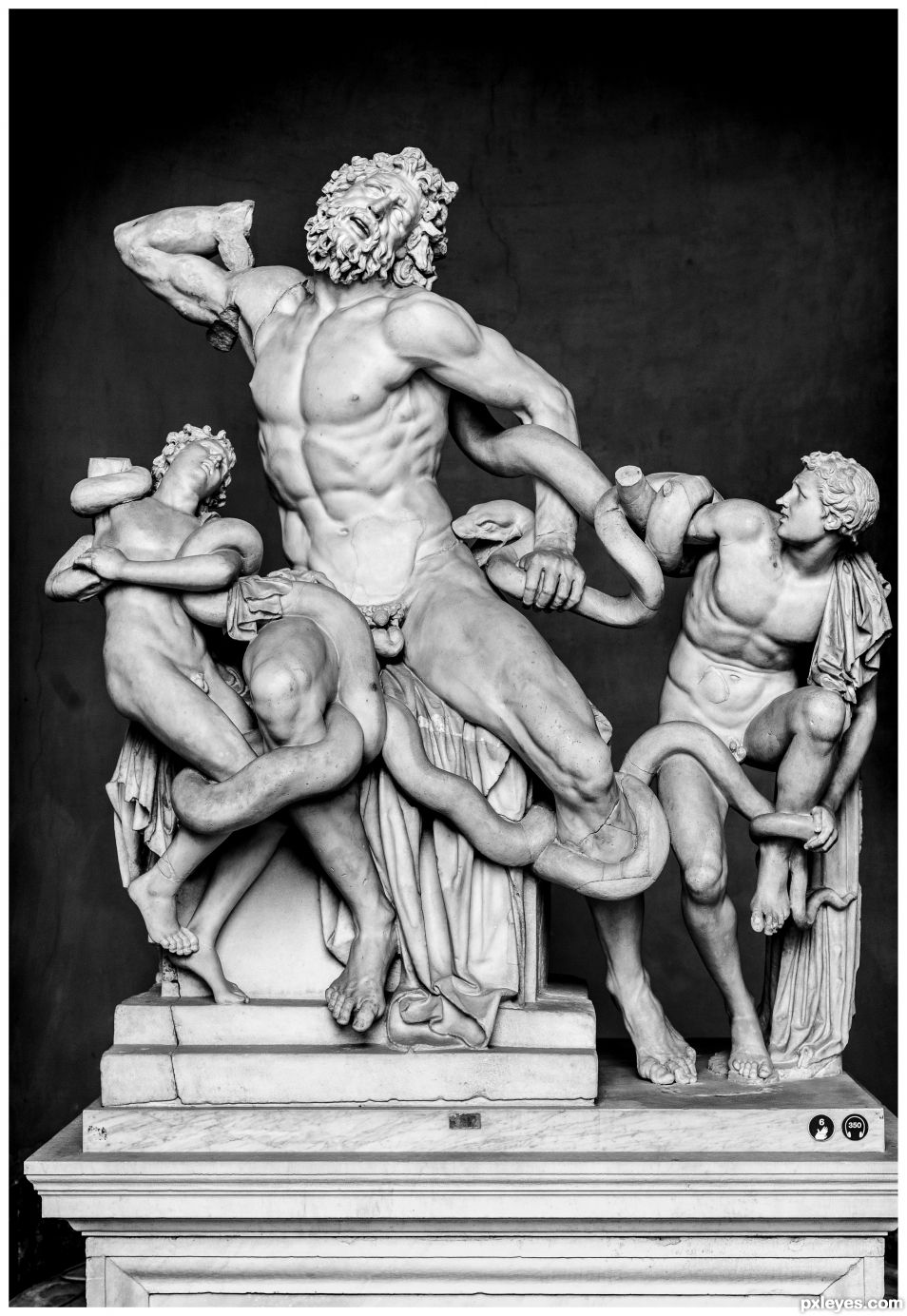 Laocoon & Sons