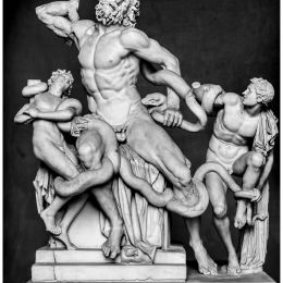 Laocoon & Sons Picture