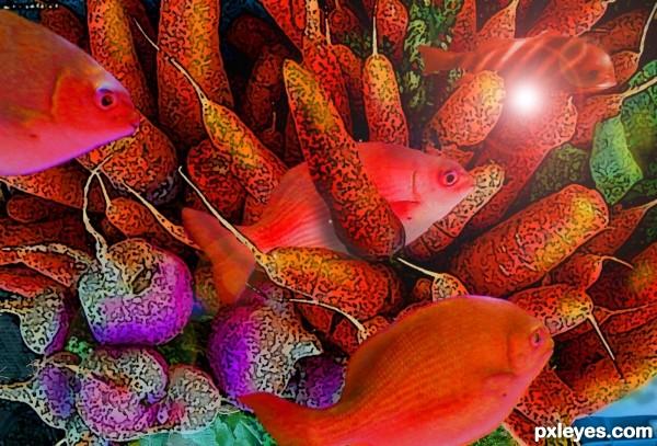 Fish Need Vegetables Too!