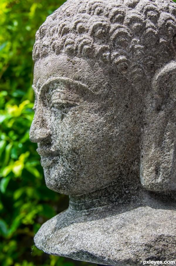 Buddha in the Sun