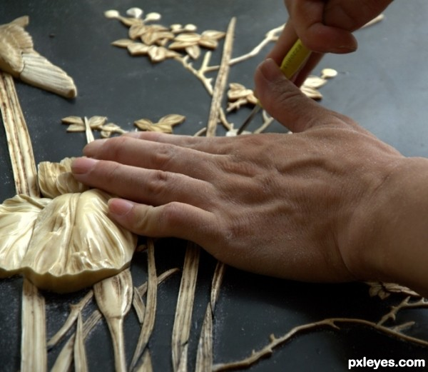 Carver Carving