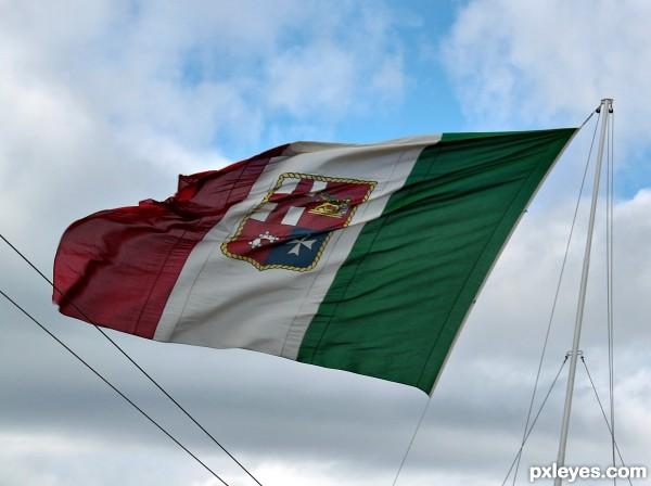 Marina flag