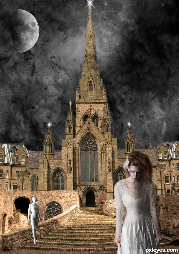 the cathedral wife