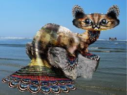 Mercat Picture