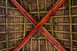 Palapa Ceiling Picture