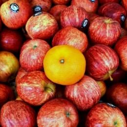 ApplesampOneOrange