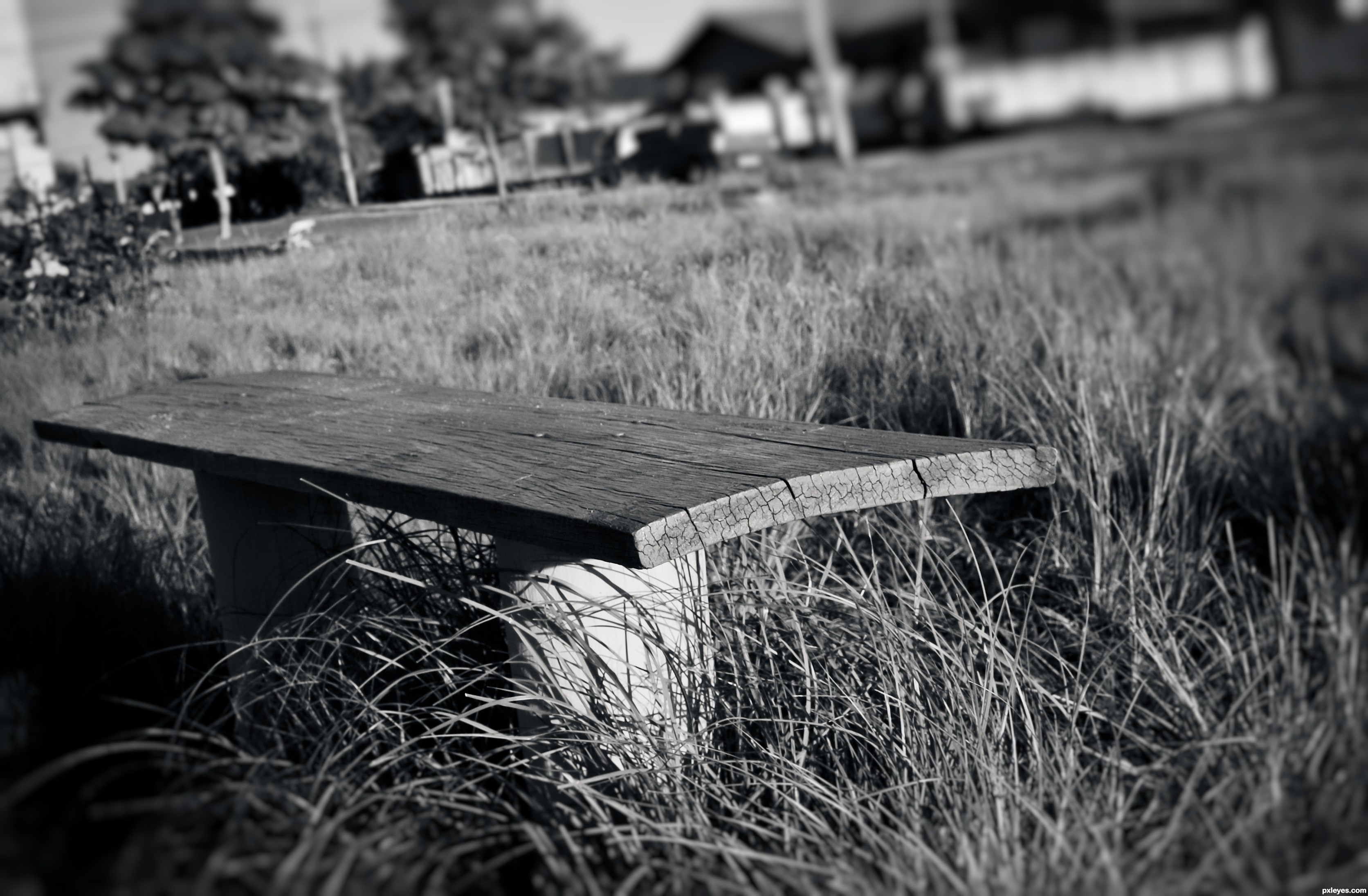 Black and white chair photography - Park Bench
