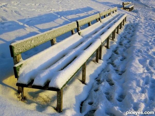 Wintery Bench
