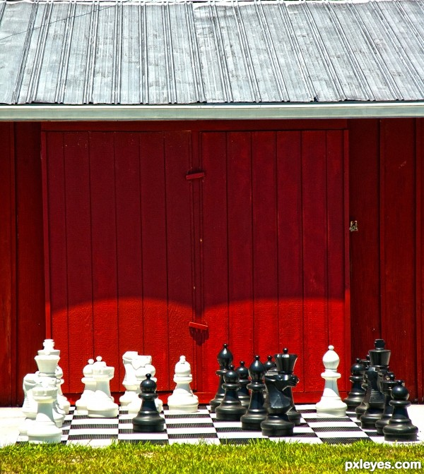 Barnyard chess board