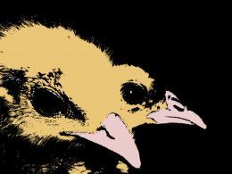 ChicksPopArt