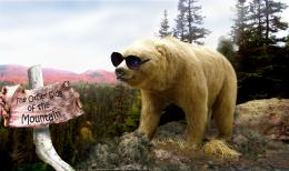 The Bear Went Over the Mountai