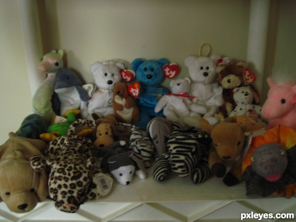 Toys For Family Reuion : Reunion photography contest pictures image page