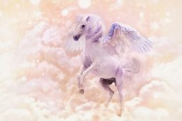 Magical Pegasus Picture