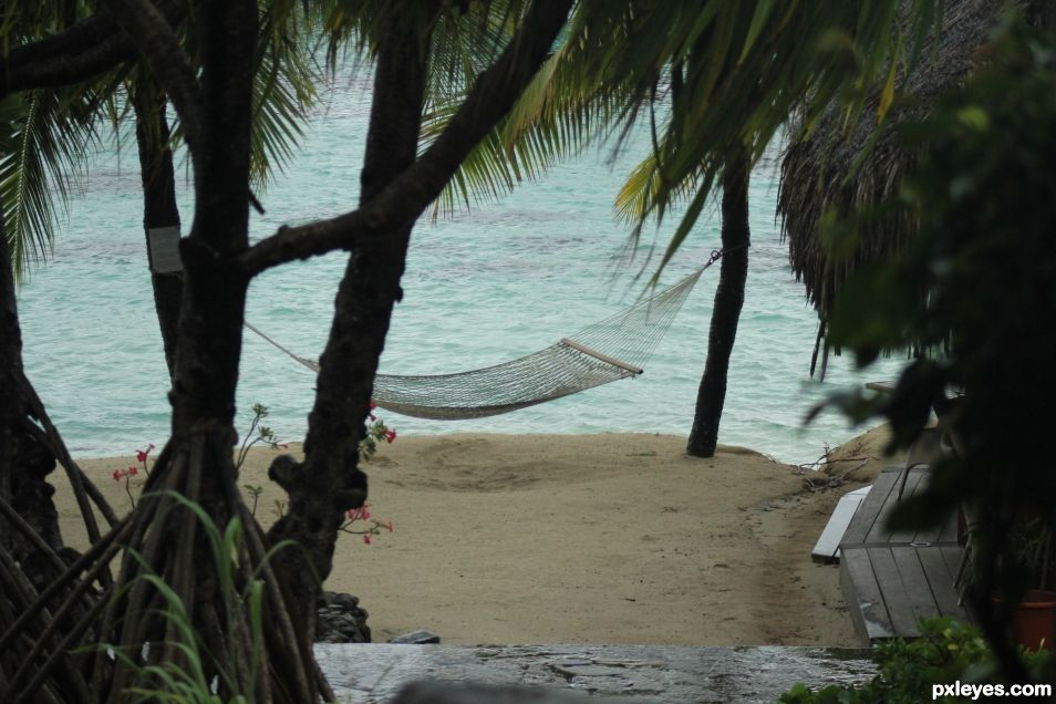 Chilled Out - Tahitian Hammock