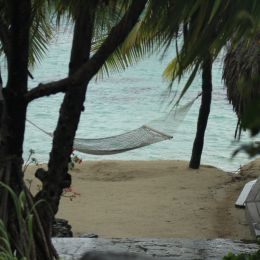 Chilled Out - Tahitian Hammock Picture