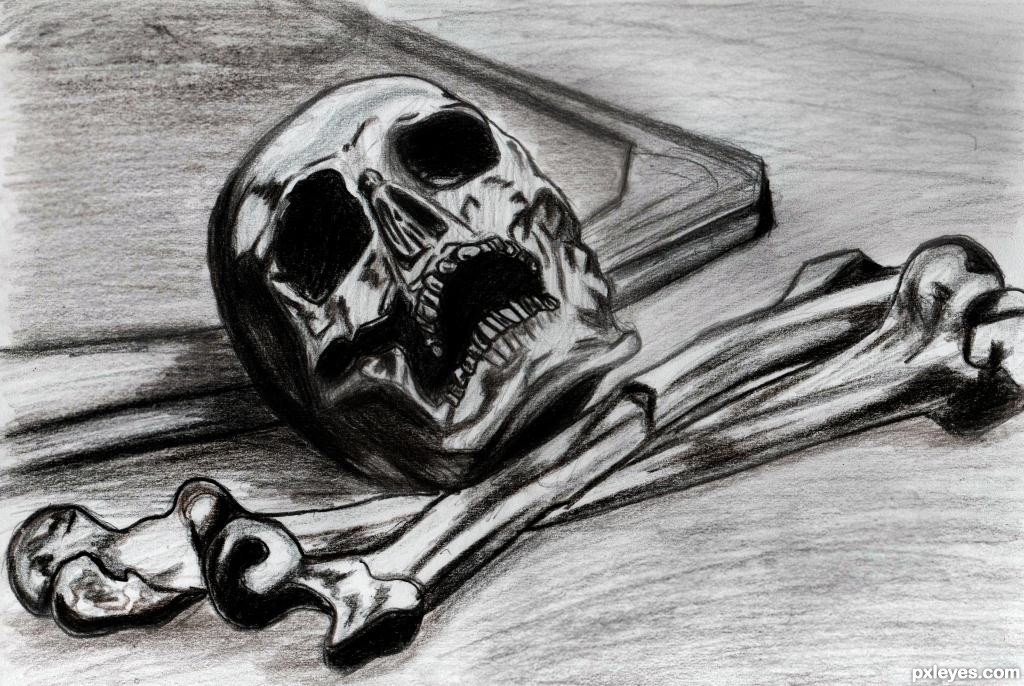 Skull Picture By Mina93 For Chills Drawing Contest Pxleyes Com