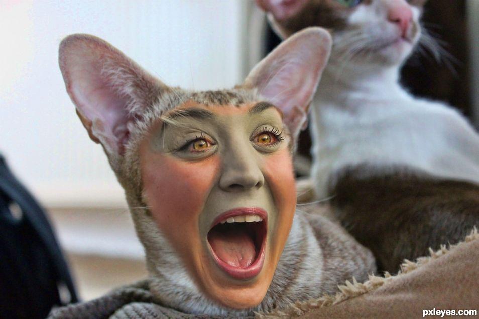 Kitty Cuoco