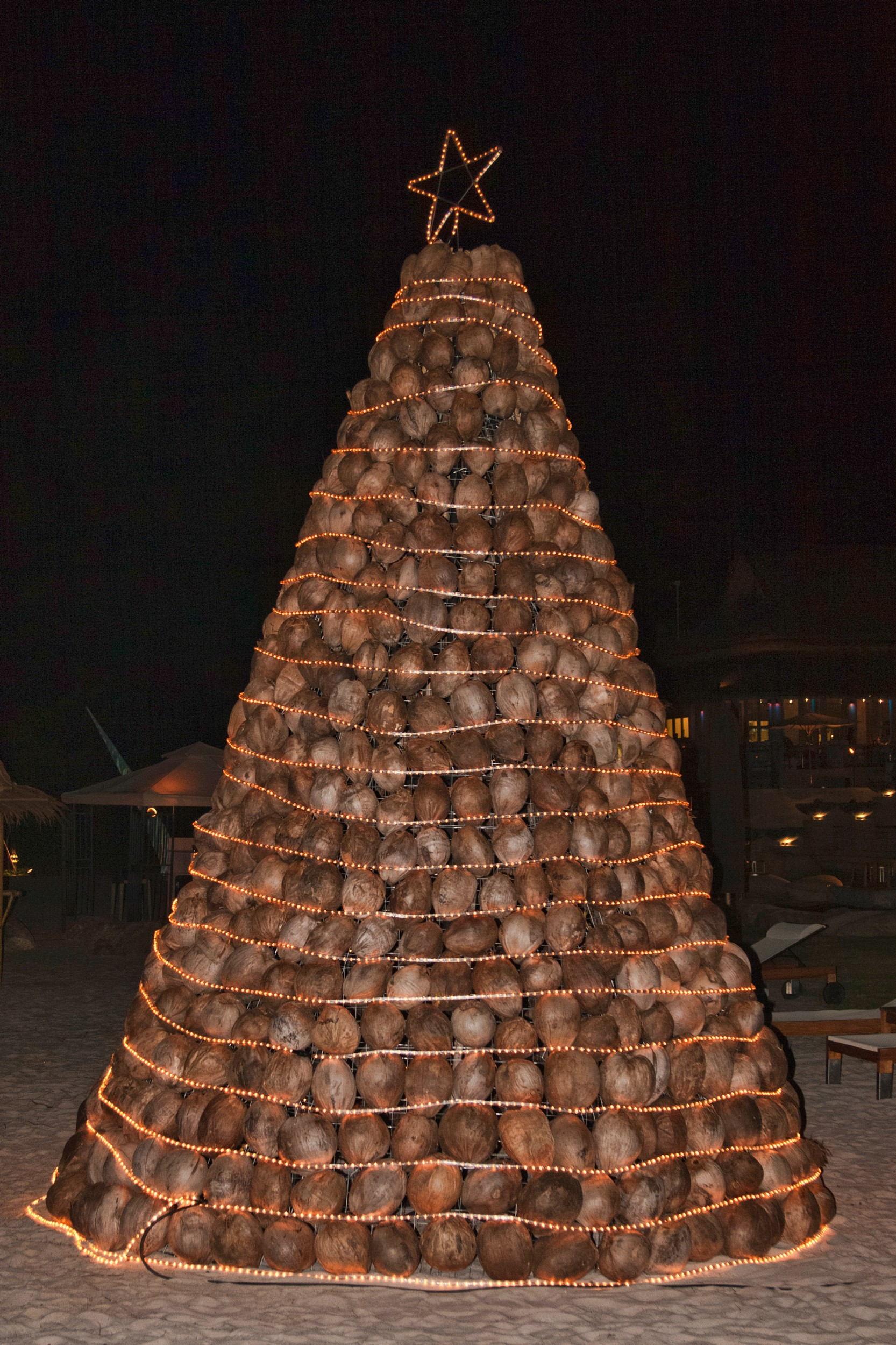 Coconut Christmas tree picture, by friiskiwi for: christmas trees ...