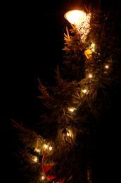 Lightstring