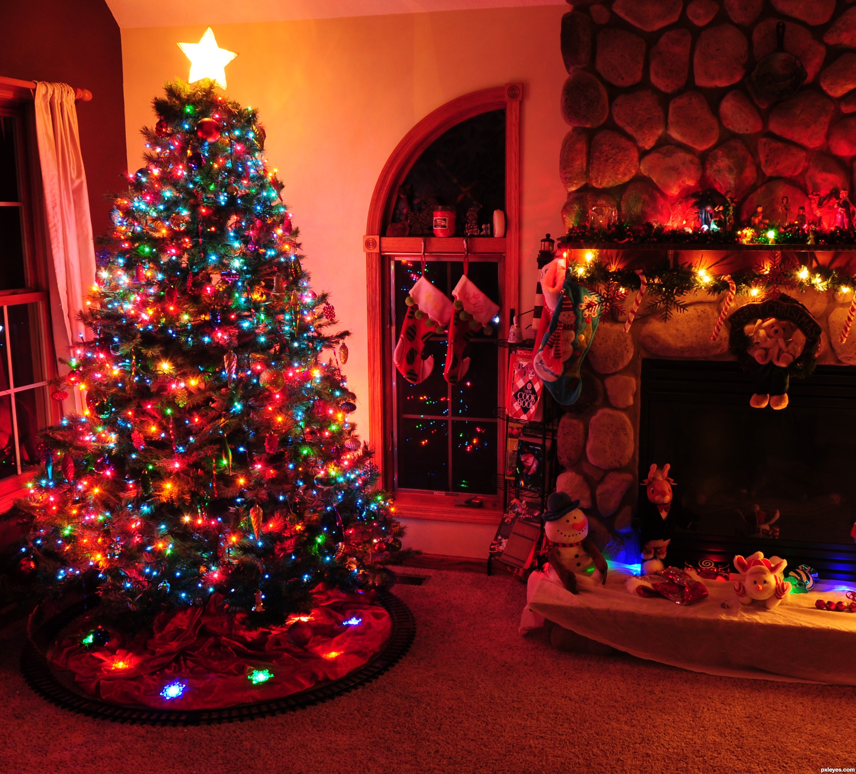 oh christmas tree picture,lcoleman21592 for: christmas