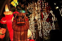 Christmaspony