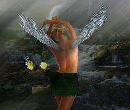 Woods Fairy