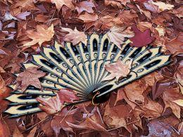 Lost fan