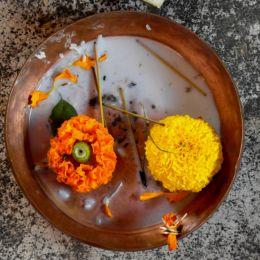 FlowersinaPot