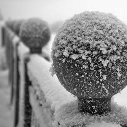 WinterBalls