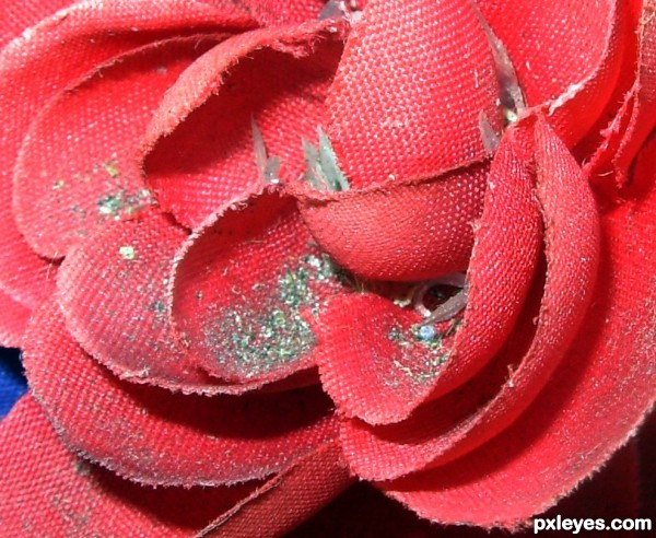 Creation of The Fabric Rose in Dust: Final Result