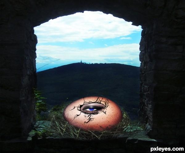 eye inside egg