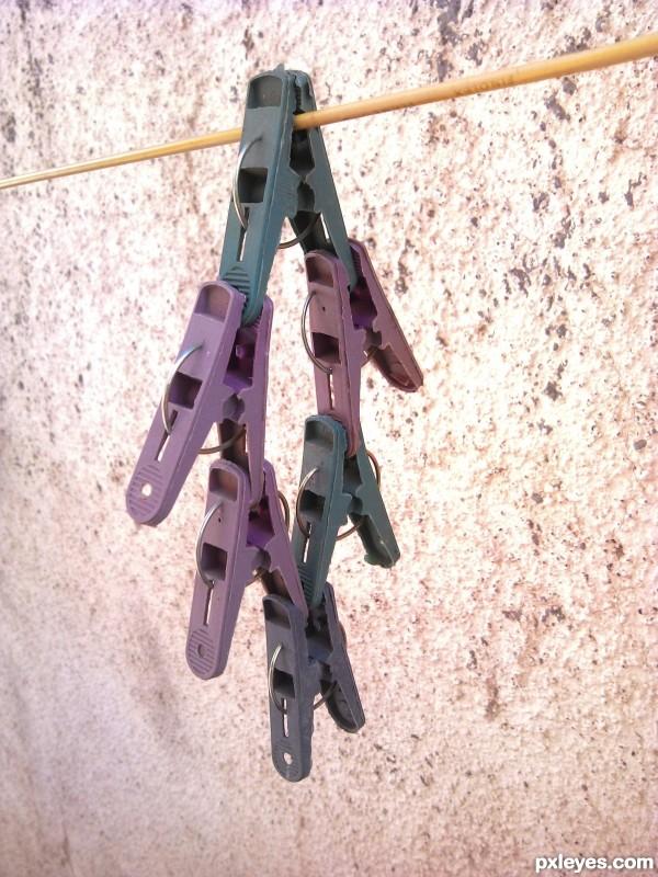 Hanging Hanging