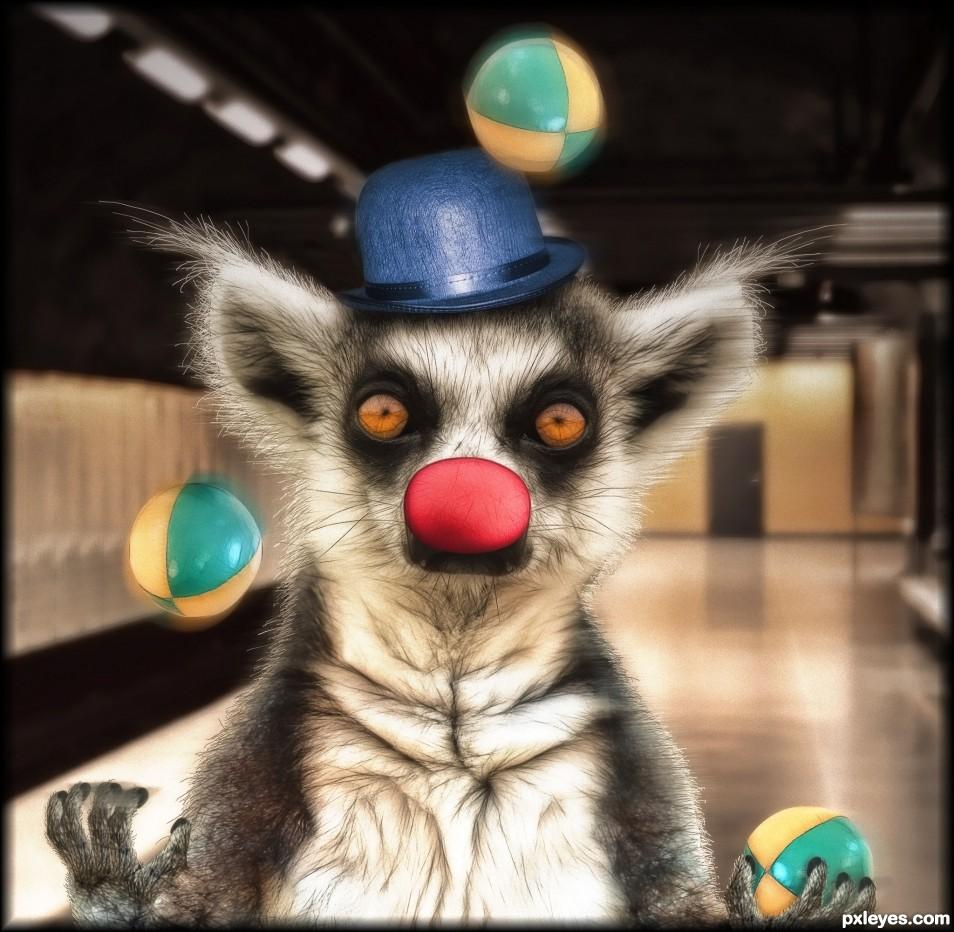Juggling Lemur
