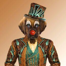 dog clown