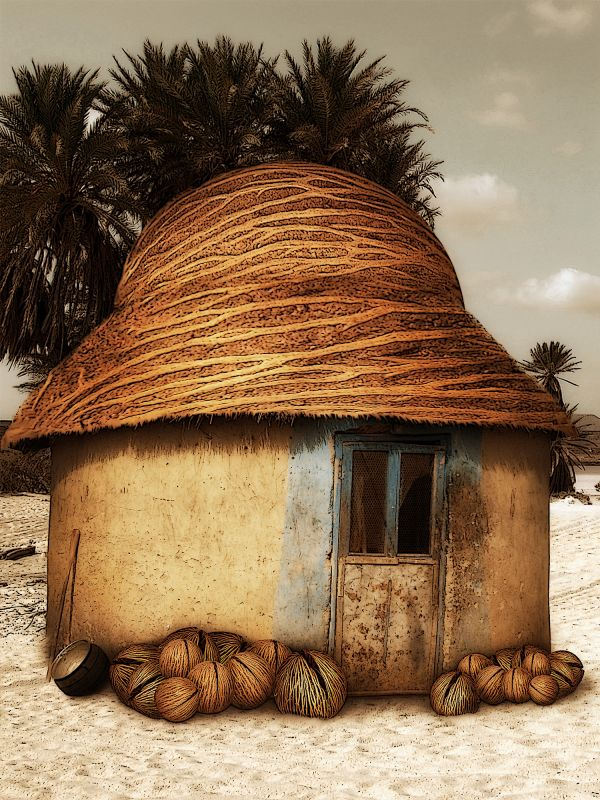 Living on giant coconuts...