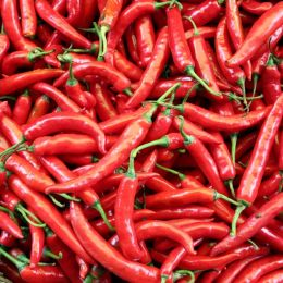 Entrynumber106435Chillies