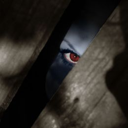 I Spy Picture
