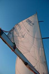 sailsail