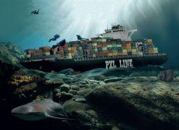 Sunk Picture