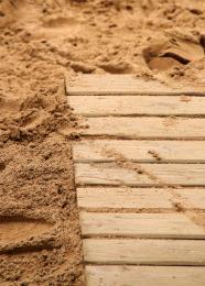 Sandampwood