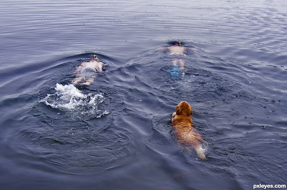 Group Swim