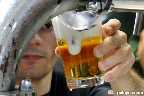 Against the heat...draft beer