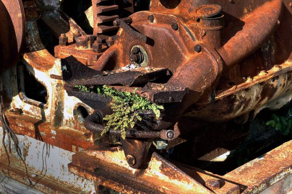 Old engine and nature