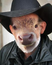 HowdyPardner