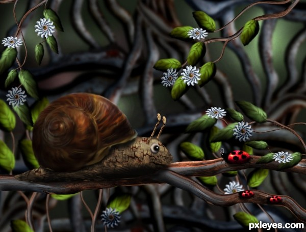 Mr. Snail Day Out