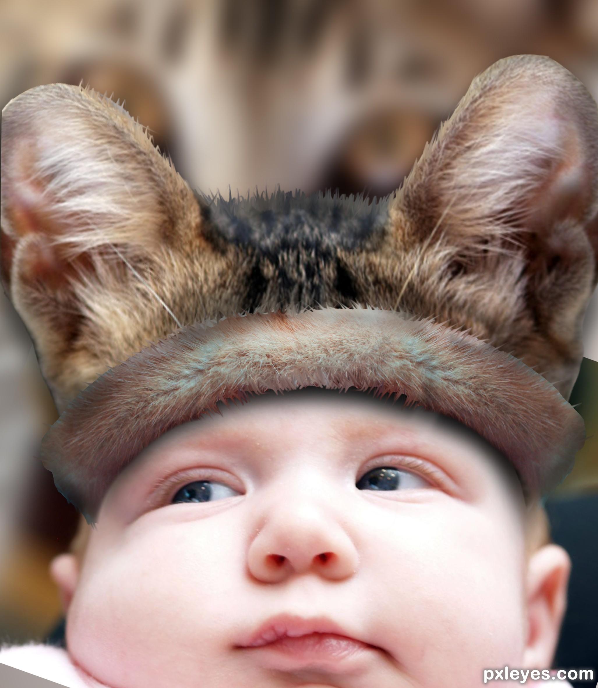 Crazy Hats Photoshop Contest (21292), Pictures Page 1