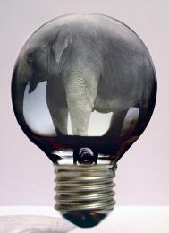 IncandescentElephant