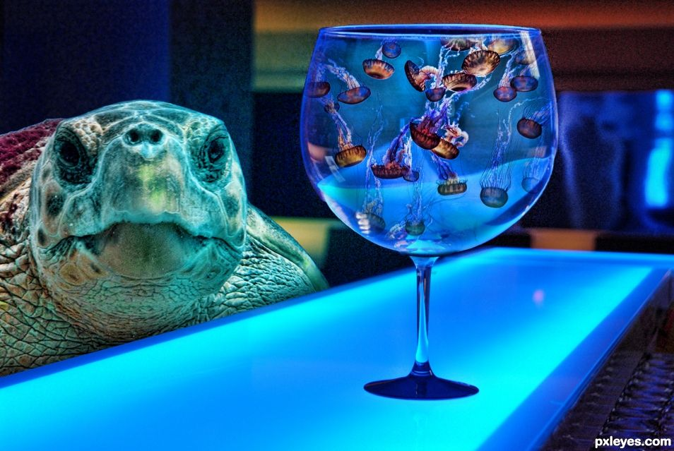 Crush at the bar picture by drivenslush for creative for Creative fish tanks