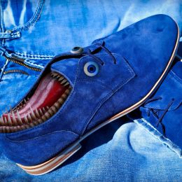 Dontsteponmybluesuedeshoes